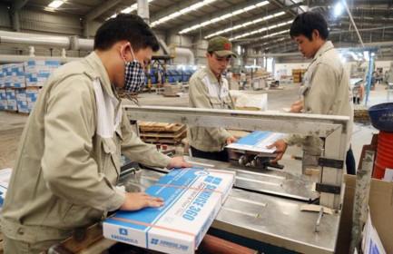 Nhựa Đồng Nai (DNP) dự kiến chi nghìn tỷ đồng để thâu tóm Công ty CMC (CVT)