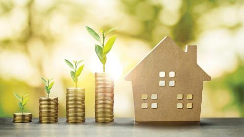 Đầu tư Phát triển Nhà và Đô thị Nam Hà Nội (NHA): Chủ tịch HĐQT vừa mua thêm 500.000 cổ phiếu