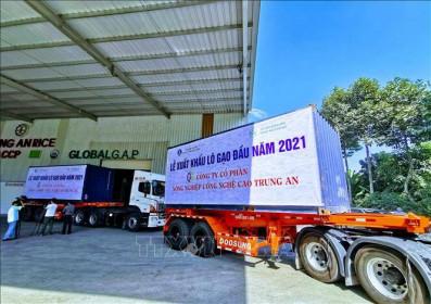 WB: Việt Nam thuộc nhóm đứng đầu châu Á về hồi phục kinh tế