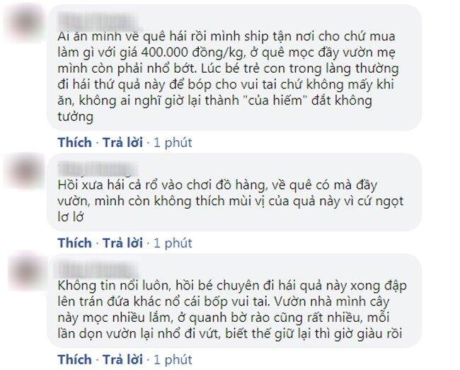"""Quả tầm bóp trước mọc dại, nay rao bán ở Việt Nam 400.000 đồng/kg, CĐM giật mình: """"Không tin nổi"""""""
