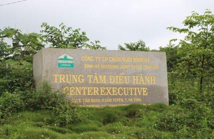 Sau lùm xùm, Công ty Bình Hà muốn hồi sinh dự án nuôi bò nghìn tỷ ở Hà Tĩnh
