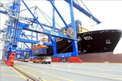 Xuất khẩu gặp khó vì giá cước cao, thiếu container lạnh