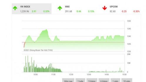 Thị trường vẫn có khả năng tiến lên sau nhịp rung lắc