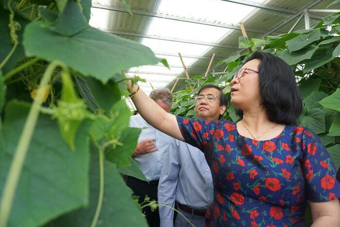 Thử nghiệm kết hợp sản xuất nông nghiệp và điện mặt trời