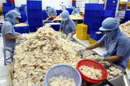 Vĩnh Hoàn (VHC) vừa nâng sở hữu tại Xuất nhập khẩu Sa Giang lên 76,72% vốn điều lệ