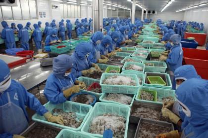 Nhập siêu từ Lào lên gần 20 triệu USD