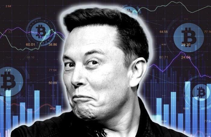 Elon Musk lại thao túng thị trường tiền ảo