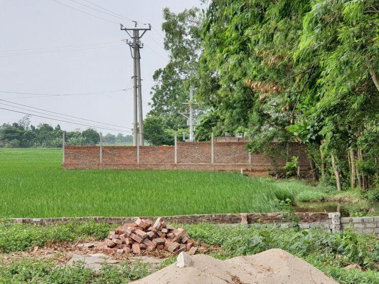 Xây dựng trên đất nông nghiệp ở Tam Dương (Vĩnh Phúc): Cần xử nghiêm!
