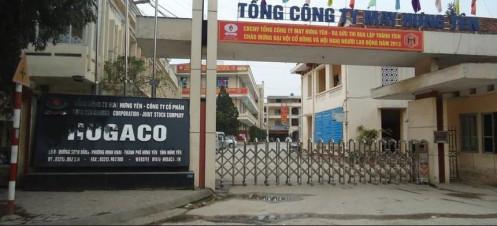May Hưng Yên (HUG): Quý I/2021 báo lãi sau thuế 11,6 tỷ đồng, chia cổ tức năm 2020 tỷ lệ 20%