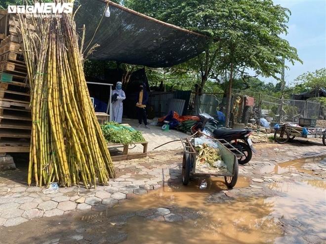 Hà Nội: Nhiều chợ cóc, chợ tạm vẫn hoạt động bất chấp lệnh cấm