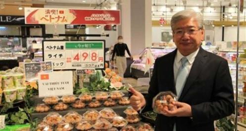 Phía Việt Nam trực tiếp giám sát kiểm dịch vải thiều xuất khẩu sang Nhật Bản