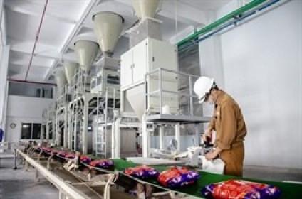 DGC báo lãi ròng quý 1/2021 tăng 50%