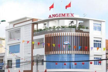 Cổ phiếu tăng trần 11 phiên, Nguyễn Kim muốn thoái hết 51% vốn Angimex