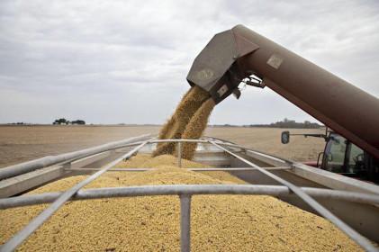 Giá hàng hóa tại Trung Quốc đã lao dốc, từ thép, than cốc tới đậu nành...