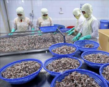 Kiên Giang: Xuất khẩu tăng gần 16%