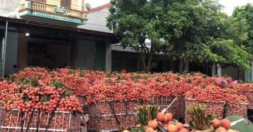 """Hàng chục nghìn tấn nông sản ở """"điểm nóng"""" Bắc Giang mòn mỏi chờ hỗ trợ"""