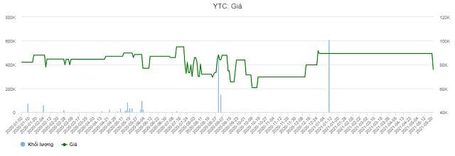 YTC: Kiểm toán có ý kiến ngoại trừ về công nợ, giá cổ phiếu rơi sàn