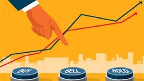 Dragon Capital không mua thêm cổ phiếu trong tuần qua