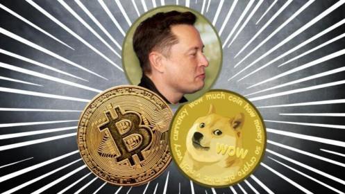 Elon Musk và thị trường tiền mã hoá: Kẻ thao túng đại tài?