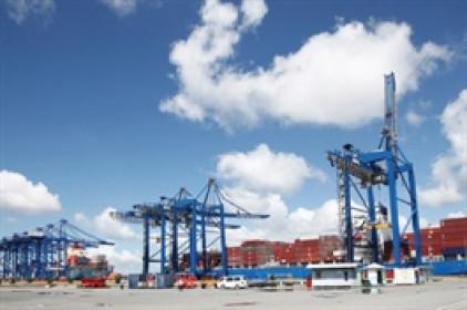 Tân Cảng Logistics dự chi cổ tức 2020 tỷ lệ 50%