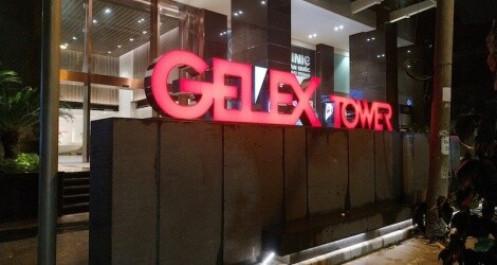 GELEX muốn đổi tên công ty, tiếp tục đẩy mạnh M&A