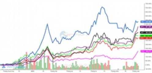 Đuổi theo lợi nhuận, nhà đầu tư bỏ qua yếu tố cơ bản giữa cơn sóng ngành chứng khoán?