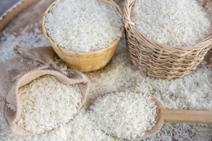 Giá lúa gạo hôm nay 3/6: Giá gạo xu hướng giảm, thị trường giao dịch ảm đạm