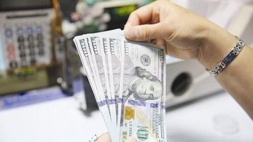 Tỷ giá USD hôm nay 13/6: Tăng khi nhà đầu tư phấn khởi