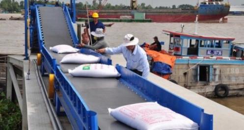 Hạn ngạch gạo xuất khẩu theo EVFTA được thực thi từ đầu năm 2022