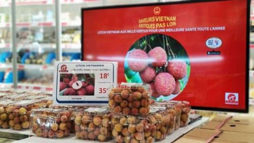 Vải thiều Việt Nam được ưa chuộng, doanh nghiệp Pháp đẩy nhanh nhậpkhẩu lô thứ 2