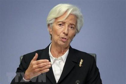 Chủ tịch ECB cứng rắn hơn về chương trình kích thích tiền tệ