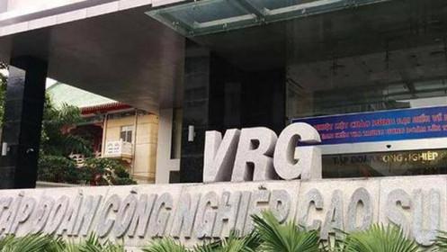 GVR lên kế hoạch lợi nhuận thụt lùi, giảm 11% năm 2021