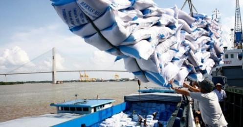 Chưa đủ thông tin khẳng định gạo Ấn Độ 'đội lốt' gạo Việt Nam