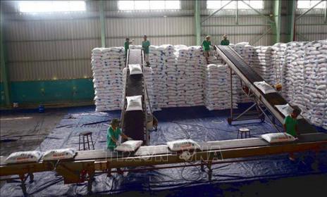 Doanh nghiệp trong nước chung tay 'hạ nhiệt'giá phân bón