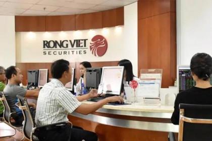 Chứng khoán Rồng Việt chốt quyền trả cổ tức 5% bằng cổ phiếu