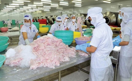 Nhóm cổ đông Trần Bá Dương đã thoái toàn bộ gần 20 triệu cổ phiếu Hùng Vương (HVG)