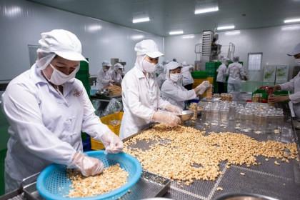 Standard Chartered dự báo tăng trưởng GDP của Việt Nam năm nay đạt 6,5%