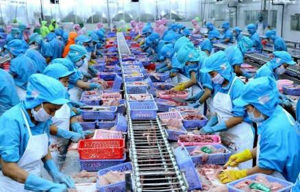 Nam Việt (ANV): Quý II/2021, lợi nhuận giảm 26,2% chủ yếu do chi phí bán hàng tăng cao