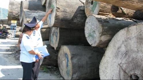 """Cảnh báo hiện tượng """"mượn"""" xuất xứ đối với mặt hàng đồ gỗ xuất khẩu"""