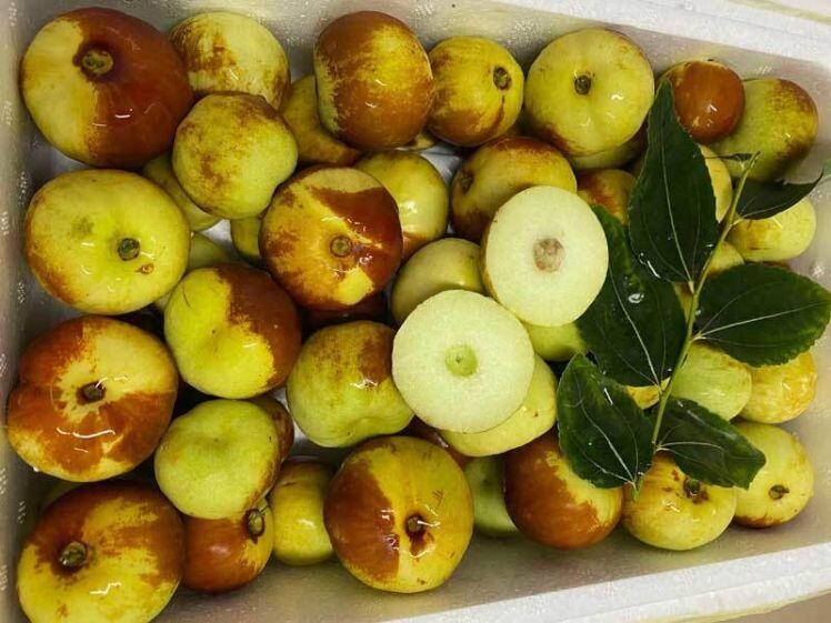 Loại táo Trung Quốc siêu lạ, giá đắt đỏ vẫn 'cháy hàng'