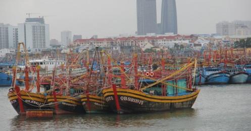 Có 19 ca mắc liên quan, Đà Nẵng đóng cửa cảng cá lớn nhất miền Trung