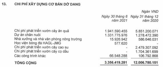 HAG báo lãi ròng quý 2 hơn 86 tỷ, ghi lỗ lũy kế hơn 7.5 ngàn tỷ đồng