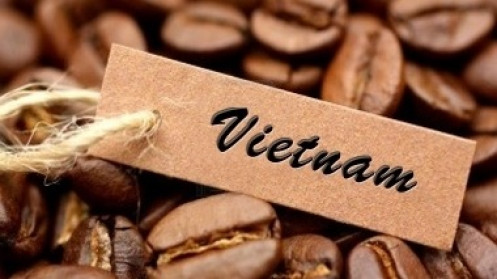 Giá cà phê hôm nay 27/7: Thêm một phiên tăng vọt, thị trường tiếp tục nóng; Khả năng vượt đỉnh của cà phê robusta?