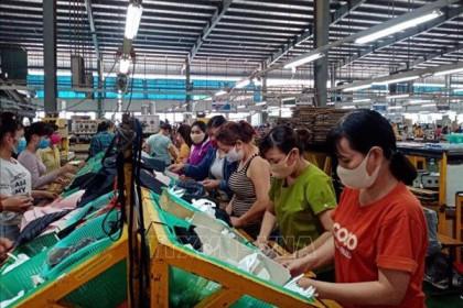 Chịu ảnh hưởng COVID-19, sản xuất công nghiệp 7 tháng của Bình Phước tăng gần 16%
