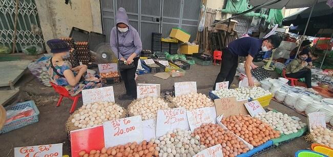 Trứng gà tăng giá gấp đôi, lái buôn tranh nhau mua, nông dân nhặt trứng không kịp bán