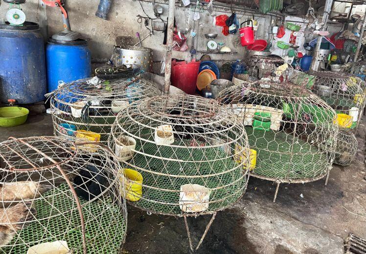 """Hà Đông: Thực phẩm """"cháy hàng"""" ở chợ dân sinh"""