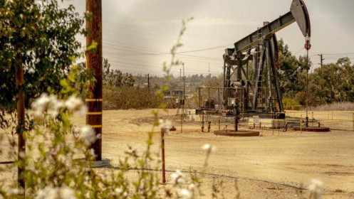 """Biến chủng Delta khiến giá dầu """"bốc hơi"""" gần 7% tuần này"""