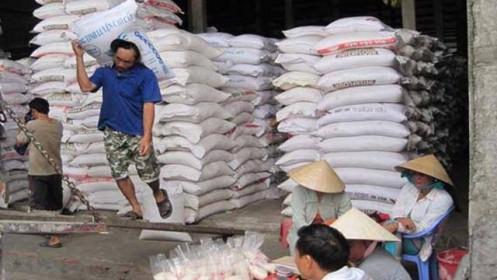 """Xuất khẩu gạo """"tê liệt"""" do đứt gãy chuỗi cung ứng"""