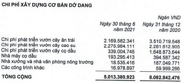HNG báo lỗ 129 tỷ trong quý 2/2021, lỗ lũy kế vượt 2,400 tỷ đồng