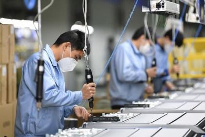 Doanh nghiệp, hộ kinh doanh cần được tiếp cận thuận lợi các gói hỗ trợ miễn thuế